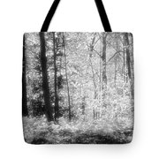 Along The Top Bw  Tote Bag