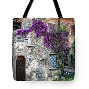 Along The Via Appia Antica Tote Bag