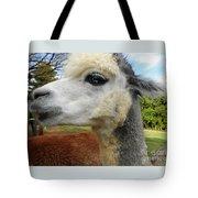 Alpaca Blue Tote Bag