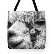 Alpaca Close Tote Bag
