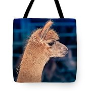 Alpaca Wants To Meet You Tote Bag