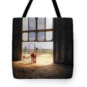 Alpacca Guard Tote Bag