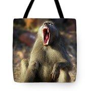 Alpha Baboon Yawning, Kruger Park Tote Bag