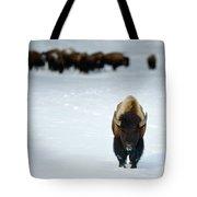 Alpha Male Bison Tote Bag
