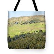 Alpine Forest Landscape.  Tote Bag