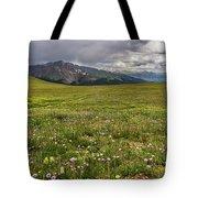 Alpine Meadow Before Mount Guyot Tote Bag