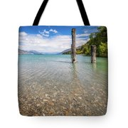 Alpine Scenery From Dart River Bed In Kinloch, New Zealand Tote Bag