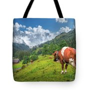Alpine Travel Stories Tote Bag