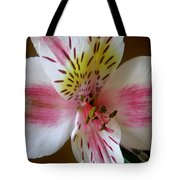 Alstroemerias - Close Tote Bag
