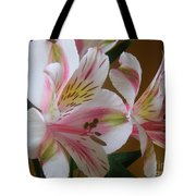 Alstroemerias - Listening Tote Bag