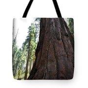 Alta Vista Giant Sequoia Tote Bag