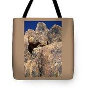 Alternate Composition Tote Bag