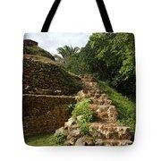 Altun Ha Maya Ruins Tote Bag
