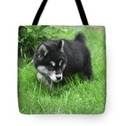 Alusky Puppy Dog Spotting A Toy To Play With Tote Bag