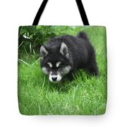 Alusky Puppy Stalking Through Tall Green Grass Tote Bag