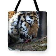 Always A Cat Tote Bag