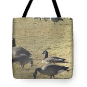 Always One In Every Crowd--thank God Tote Bag