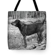 Always Ready For Fun Tote Bag