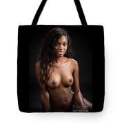 Amani African American Nude Sensual Sexy Fine Art Print 4999.02 Tote Bag