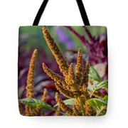 Amaranth- Two Tote Bag