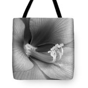 Amaryllis Flower Bloom In Black And White Tote Bag
