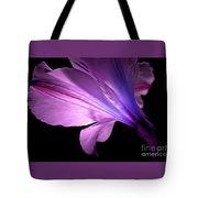 Amaryllis Glow Tote Bag