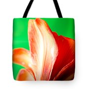 Amaryllis Head Pt Orange Amaryllis Flower On Green Background Tote Bag