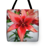 Amaryllis In Fading Tote Bag