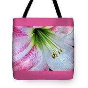 Amaryllis - Lily Tote Bag