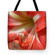 Amaryllis Macro Tote Bag