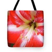 Amaryllis Red Tote Bag
