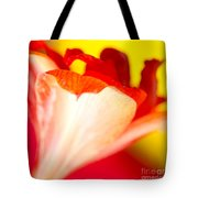 Amaryllis Shadow Abstract Flower With Shadow On Red And Yellow Tote Bag