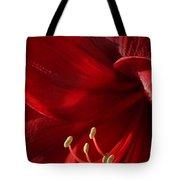 Amaryllis6790 Tote Bag