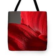 Amaryllisleaves6698 Tote Bag