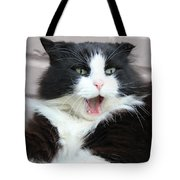 Amazement Cat Timothy Tote Bag