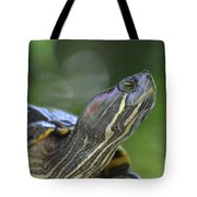 Amazing Close-up Painted Turtle Resting Tote Bag