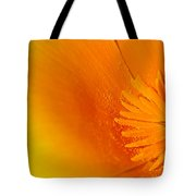 Amazing Colors Tote Bag