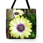 Amazing Daisy  Tote Bag
