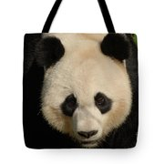 Amazing Face Of A Beautiful Giant Panda Bear Tote Bag