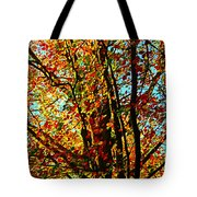 Amazing Fall Foliage Tote Bag
