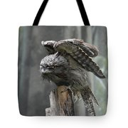 Amazing Frogmouth Bird With His Wings Extended Tote Bag