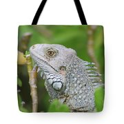 Amazing Gray Iguana Sitting In The Top Of A Bush Tote Bag