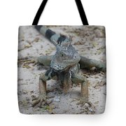 Amazing Iguana With A Striped Tail On A Beach Tote Bag