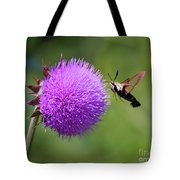 Amazing Insects - Hummingbird Moth Tote Bag