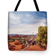 Amazing Juniper Tree At Kodachrome Basin State Park Tote Bag