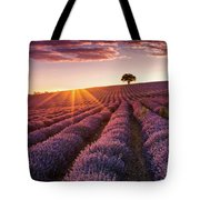 Amazing Lavender Field At Sunset Tote Bag