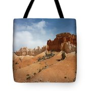 Amazing Mountains In National Park  Tote Bag