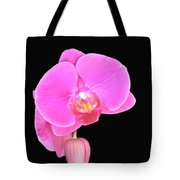 Amazing Pink Orchid With Black Background Orquidea Tote Bag