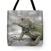 Amazing Posing Gray Iguana Perched On A Log Tote Bag