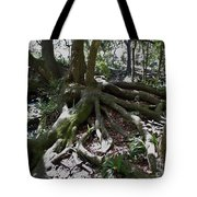 Amazing Roots Tote Bag